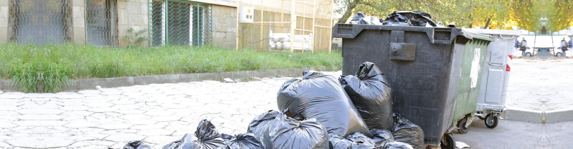 trash bin on the road